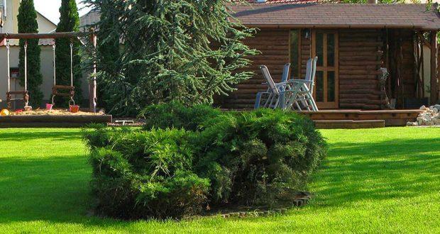 Szépséges gyepszőnyeget alakíthat ki kertjében.