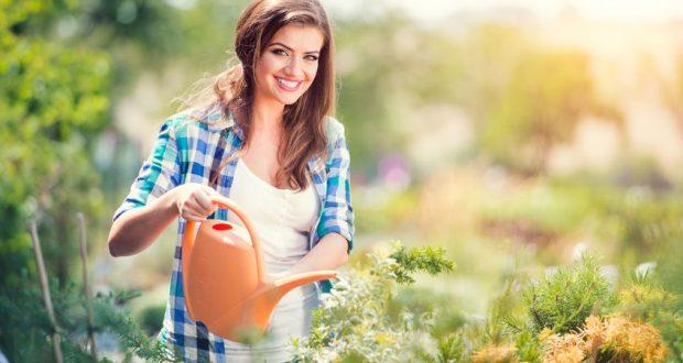 Remek kertészek segítségét kérheti kertrendezésre vagy éppen kertápolásra!